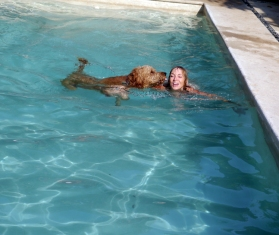 Teaching Iggy how to swim in the pool
