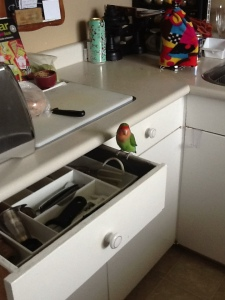 Tony's drawer