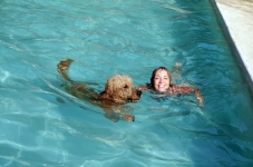 Swimming with Iggy